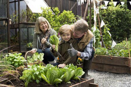 Group of people gardening backyard together Stok Fotoğraf