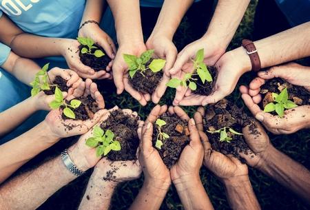 Personnes Mains Planting Plant Nurture Environmental Banque d'images - 81885473