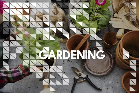 Gardening word on plants background 版權商用圖片