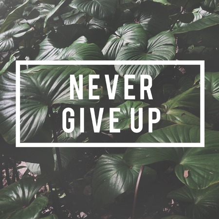 Never Give Up Word on Nature Background