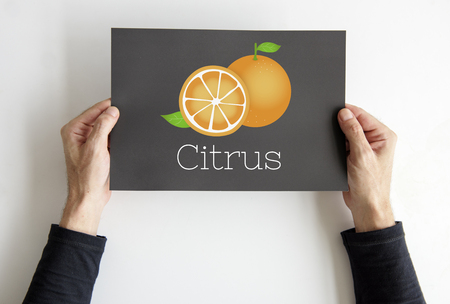 Illustration of fresh organic orange on banner