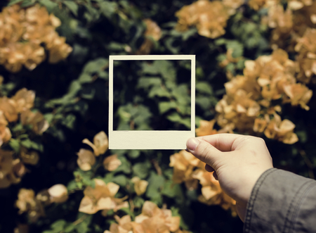 People Hand Holding Photo Frame with Bougainvillea Background Stock Photo
