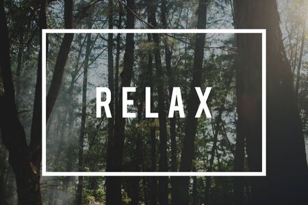 Nature Relax Recreation Freedom Concept