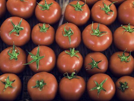 Fresh Tomato Vegetable Harvest From Farm Stock Photo