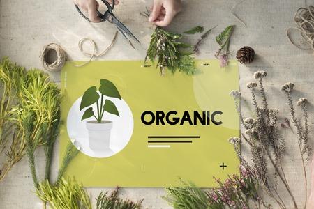 DIY flower arrangement with environmental banner Stock Photo