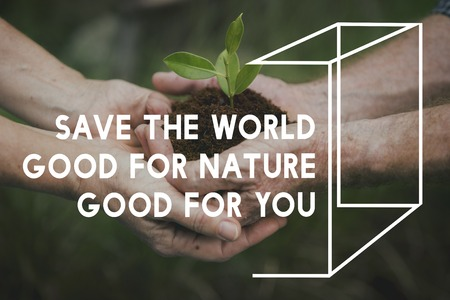 Planting Trees Nature Environment Save World Ecology Word Graphic Imagens