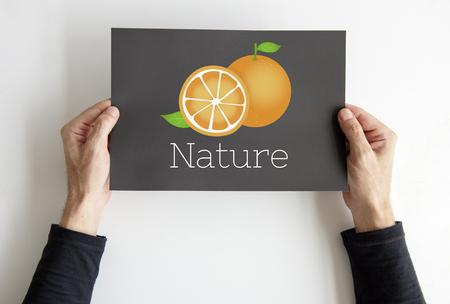 Illustration of fresh organic orange on banner