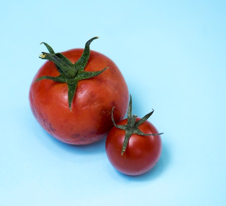 Two organic red tomatos on the background