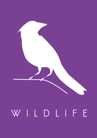 Graphic with bird silhouette and wildlife concept