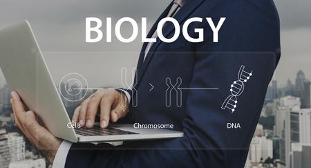 セル chromosemes と DNA について生物学を学習している人