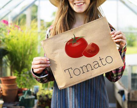 Illustratie van voedzaam tomaat gezonde voeding