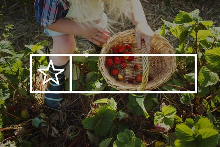 Natuurlijk Milieu Banner Label Copyspace Stockfoto