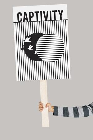 Grafik des Vogels aus der Gefangenschaft zur Freiheit entfesselt Standard-Bild - 82918779