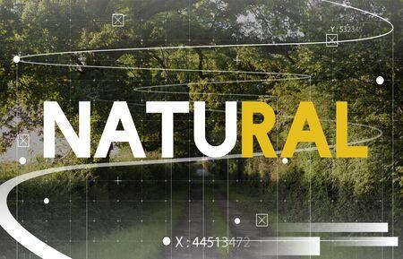 Botanic Nature Tropical Green Word Graphic