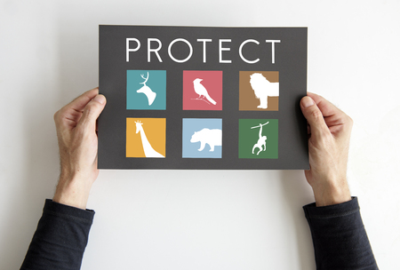 Hand holding a banner with save animals graphic Banco de Imagens