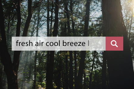 Fresh Air Cool Breeze Holiday Vacation Relaxation Reklamní fotografie - 83038987