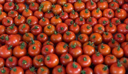 Fresh organic tomatoes product pattern Stok Fotoğraf - 83042736