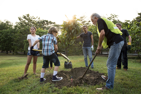 Group of people plant a tree together outdoors Stok Fotoğraf