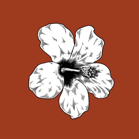 Zeichnungsblumennatur-Vektorikone des Chinesen rosafarbene auf rotem Hintergrund Standard-Bild - 85324355