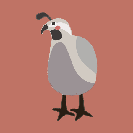 Illustration style of wildlife - Quail Иллюстрация