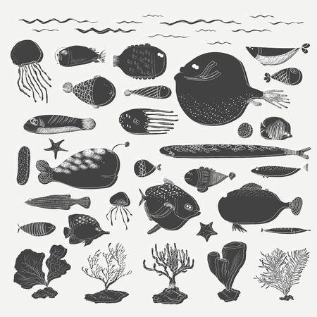 Underwater creatures Reklamní fotografie - 86205173