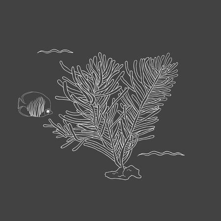 Underwater creatures Illustration