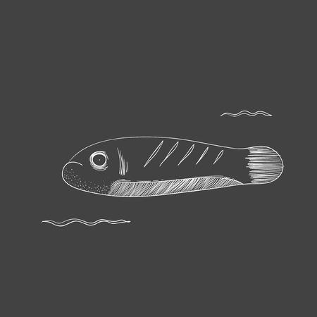 水中の生き物