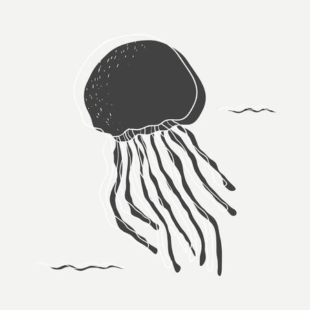 Jellyfish vector
