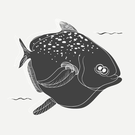 Illustration von Fisch isoliert auf den Hintergrund Standard-Bild - 90815617