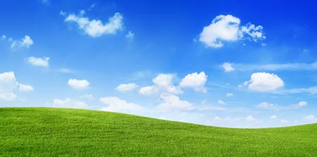 그린 필드와 푸른 하늘 스톡 콘텐츠 - 89608454