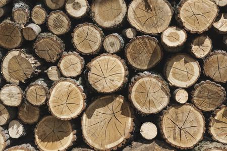木材の積み重ね 写真素材
