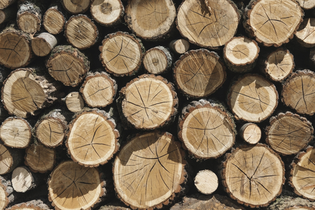 Stapels hout Stockfoto