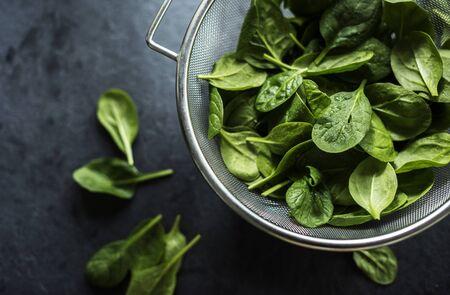 Fresh spinach leaves Reklamní fotografie
