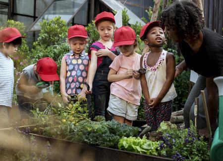 Lehrer und Kinderschule lernen Ökologie Gartenarbeit