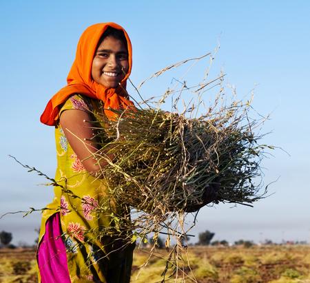 Indian girl working on the farm. near Jaipur, India. Stock Photo