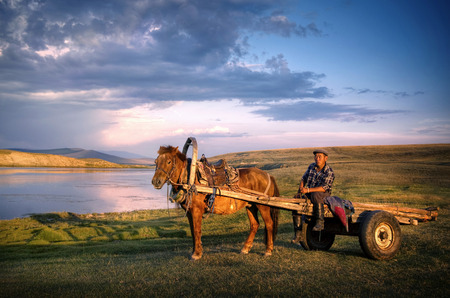 Horse man sitting on a horse cart in a scenic view of nature.