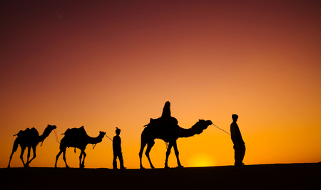 indian subcontinent ethnicity: Indigenous Indian men walking through the desert with their camels.