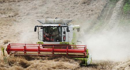 Harvest Agricultural Crop Field Machinery Season Concept 版權商用圖片 - 90599135