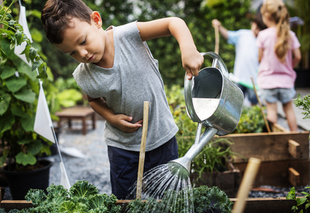 Group of kindergarten kids learning gardening outdoors