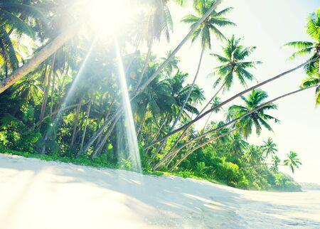 Tropical beach on Samoa Stok Fotoğraf