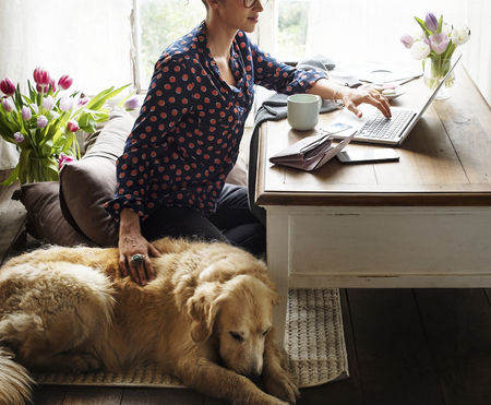 Woman working at home with her dog Banco de Imagens