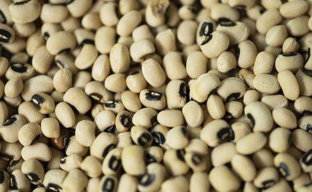 Soy beans texture background Banco de Imagens