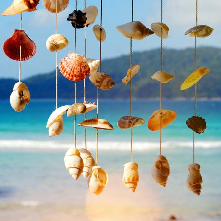 Sea shells on the sea shore. Фото со стока
