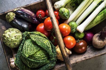 Various types of fresh vegetables