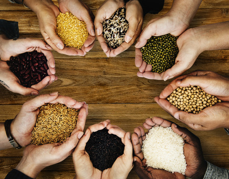 People holding grains in their hands