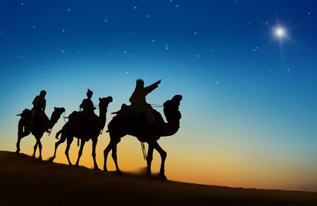 De drie koningen kijken naar de ster.