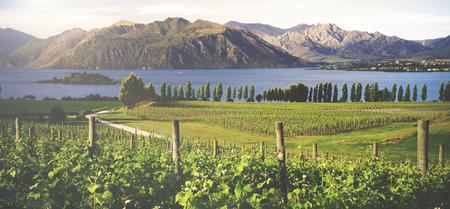 Beautiful countryside in New Zealand.