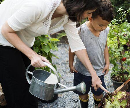 植物に水をやり方を教える先生 写真素材