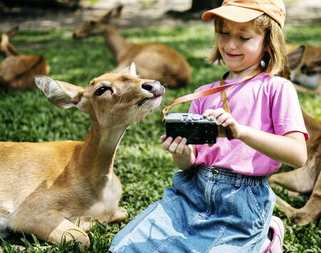 Junges kaukasisches Mädchen, das selfie mit Rotwild am Zoo nimmt Standard-Bild