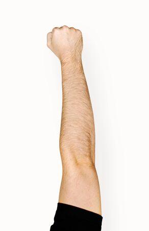 손을 잡고 변형 개체